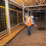 Alcaldía desinfectará 23 mil tramos en 7 mercados y más de 1 mil 500 espacios públicos de Managua
