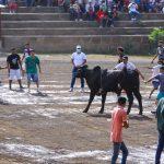 Alegre corrida de toros en honor a Santo Domingo de Guzmán
